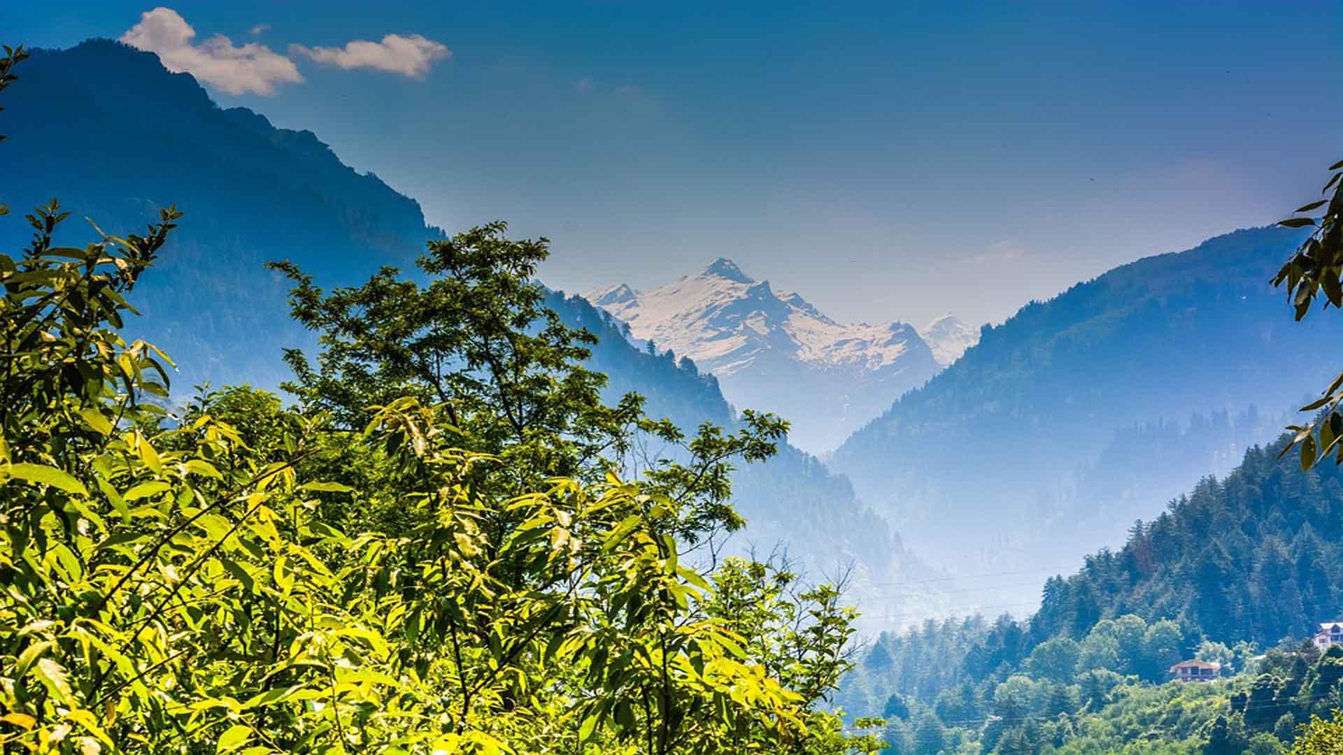 shimla-hills